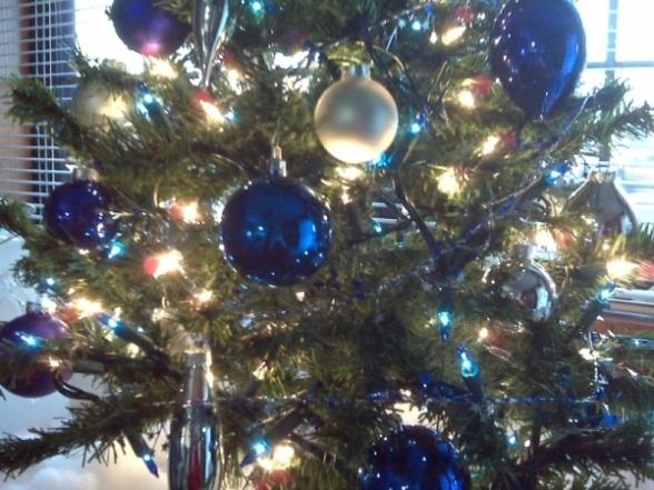 mom-tree-closeup-122408_small2